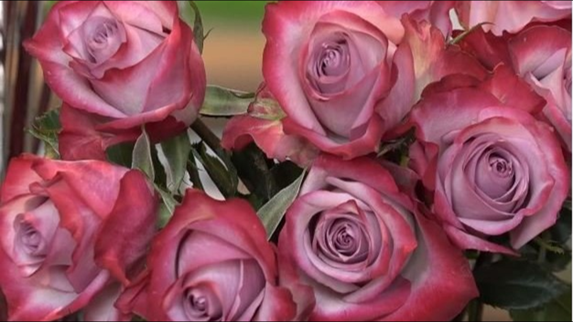 Verify: Can flowers improve your mood?